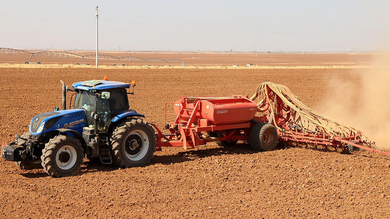 Drought in central Turkey risks dramatic reduction in grain harvest