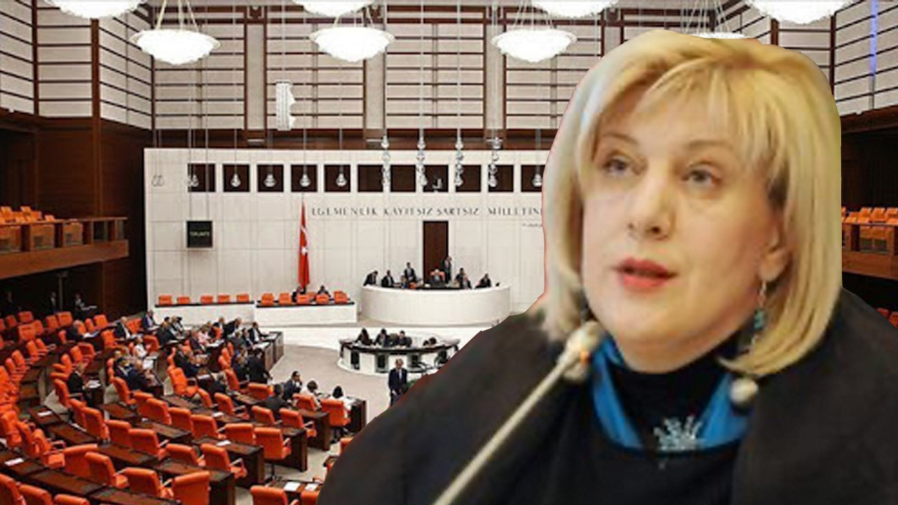Council of Europe calls on Ankara to stop bill restricting NGO activities