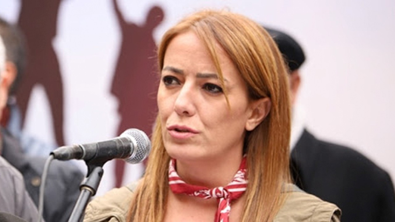 Ankara investigates journalist from Turkish Cyprus on insult charges