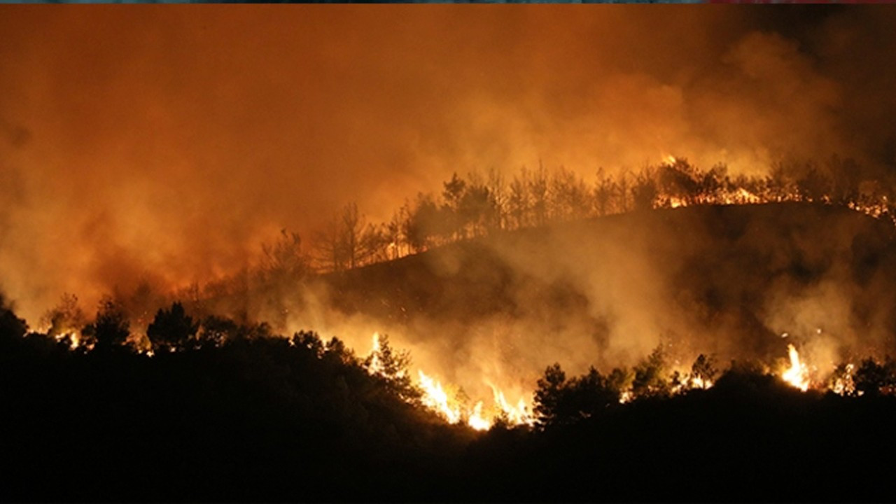 Almost 30,000 soccer fields of forest land scorched in Turkey in 2020