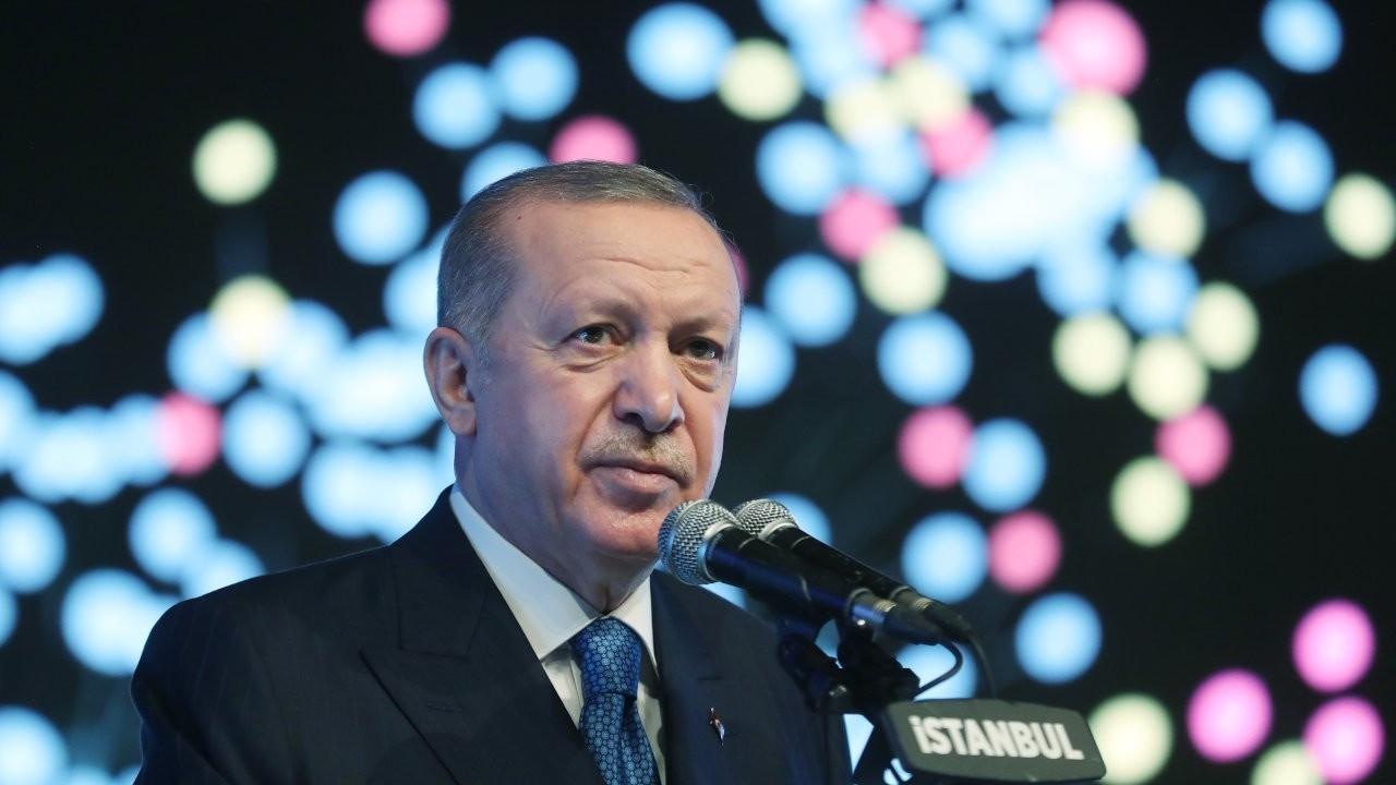 Erdoğan's economy plan: Reform or declaration of intent?