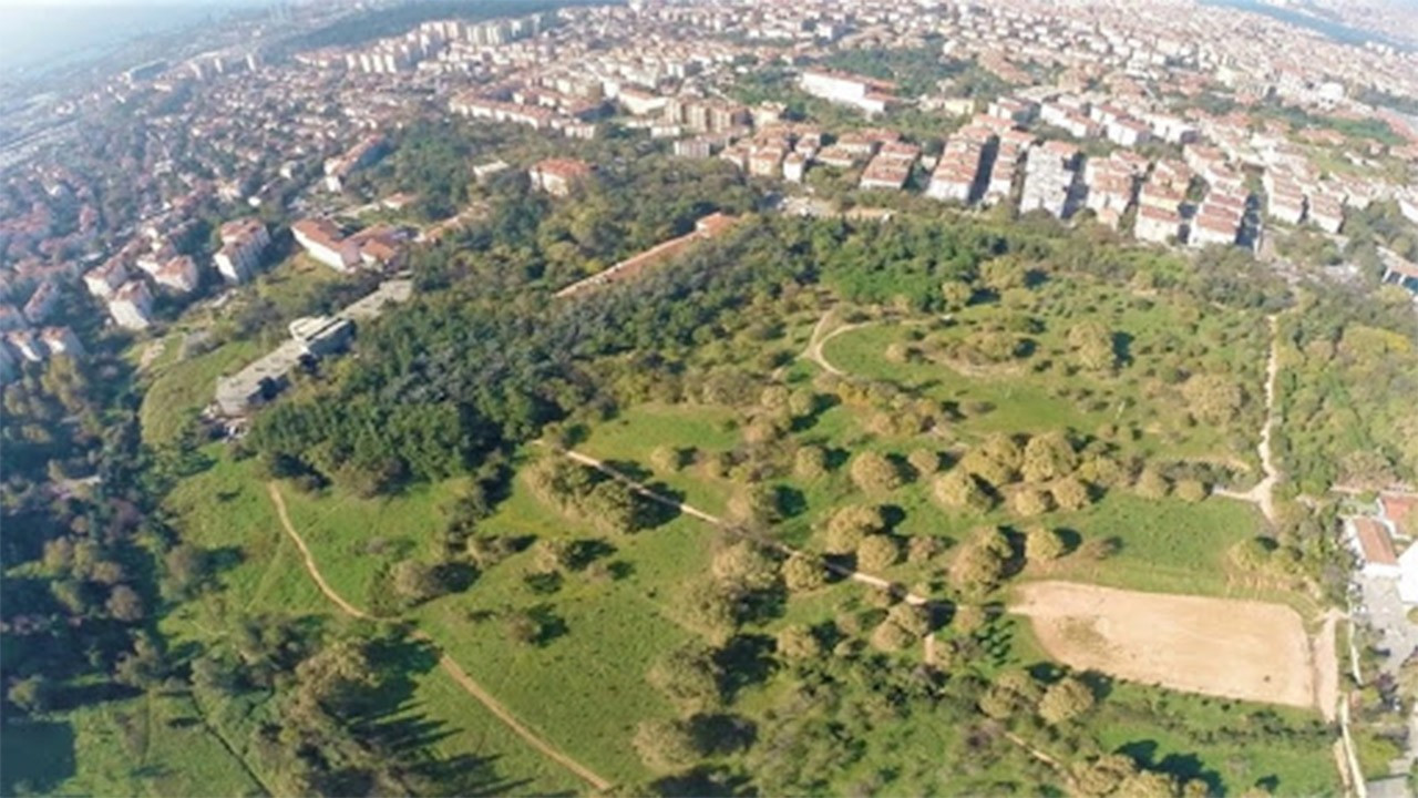 Istanbul's Validebağ Grove in danger due to AKP district municipality's 'rehab project'