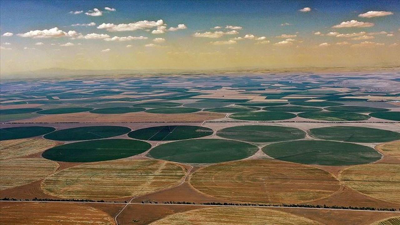 Leading grain producer Konya Plain lacks water supply, distribution