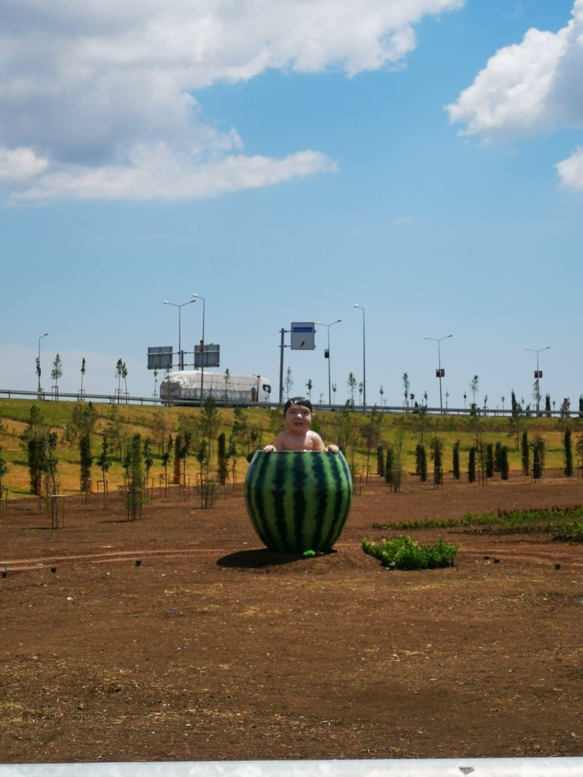 Watermelon baby statue in Diyarbakır joins Turkey's bizarre artworks - Page 1