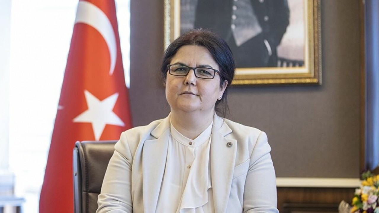 Turkish minister under fire for saying spike in violence against women 'at tolerable levels'