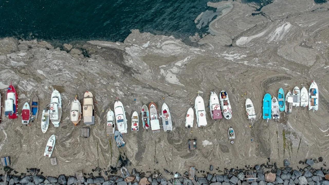 Turkey plans to declare Marmara Sea protected area
