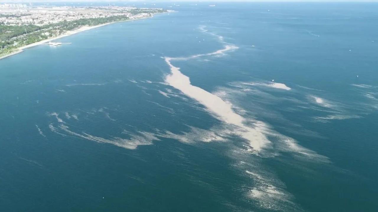 Parliament establishes commission to investigate 'sea snot' outbreak