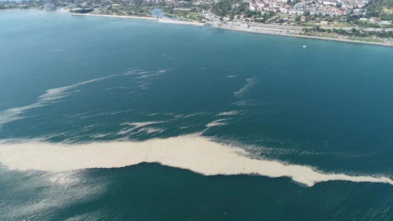 Turkish parliament establishes commission to investigate 'sea snot' outbreak - Page 2