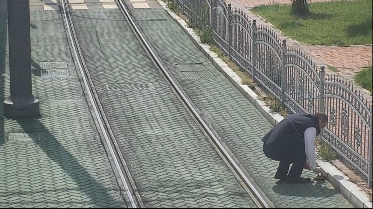 Heartwarming video shows Turkish driver stopping tram to save turtle