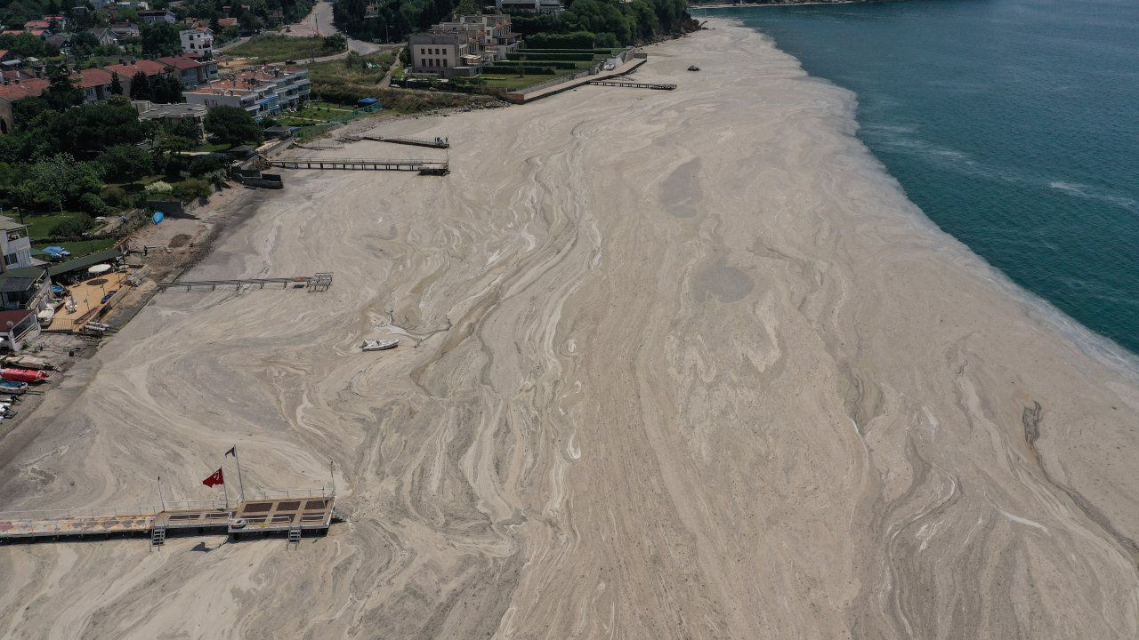 Drone images reveal shocking extent of 'sea snot' outbreak in Istanbul - Page 2