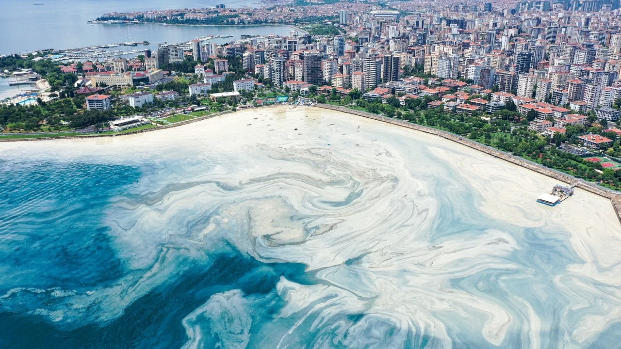 Aerial photos show how 'sea snot' outbreak continues at full speed