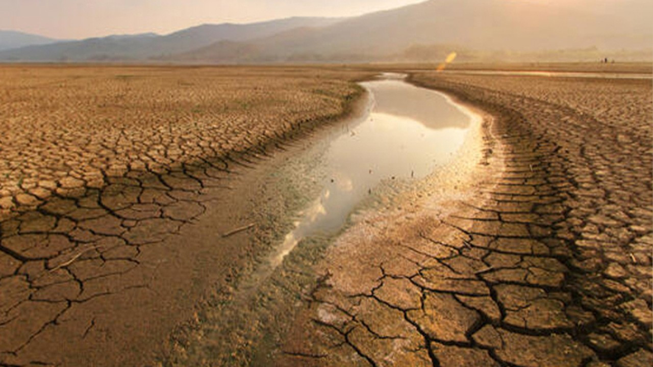 60 pct of land in Turkey suffers from water shortage, risks drought