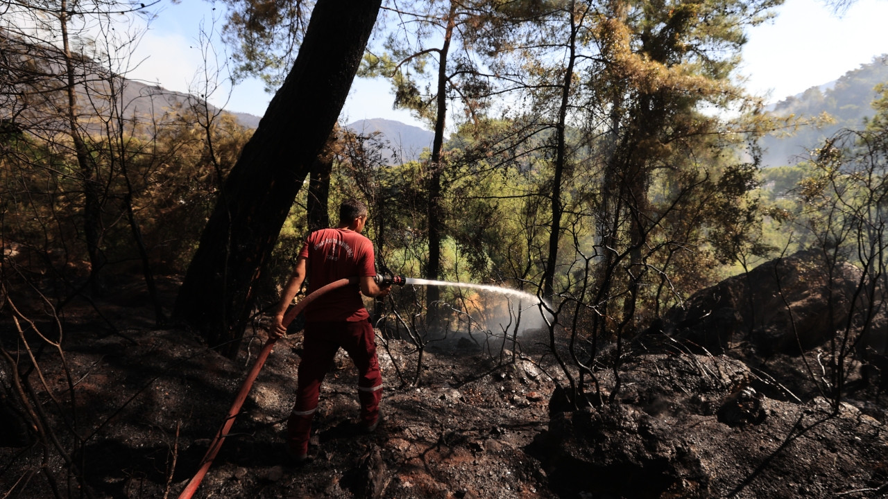 Turkish government bashed for weak efforts to extinguish forest fires