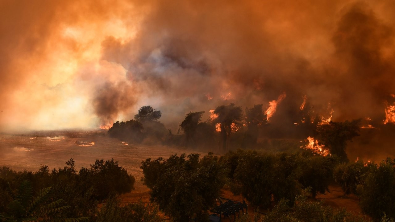 Turkey burning: Desperation and outrage as gov't lets fires swallow the country
