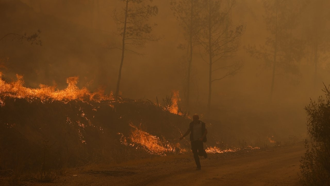 Wildfires continue raging in Turkey for seventh day, as foreign aid arrives