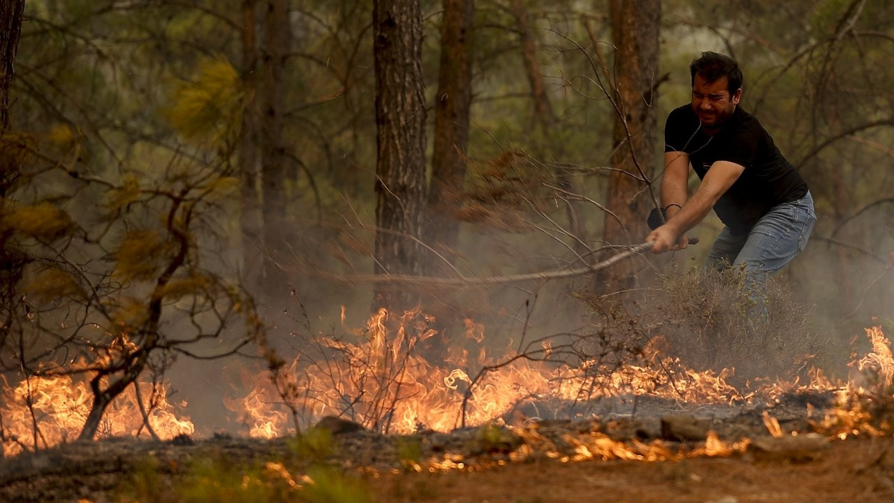 Turkey's media watchdog threatens broadcasters over wildfire coverage