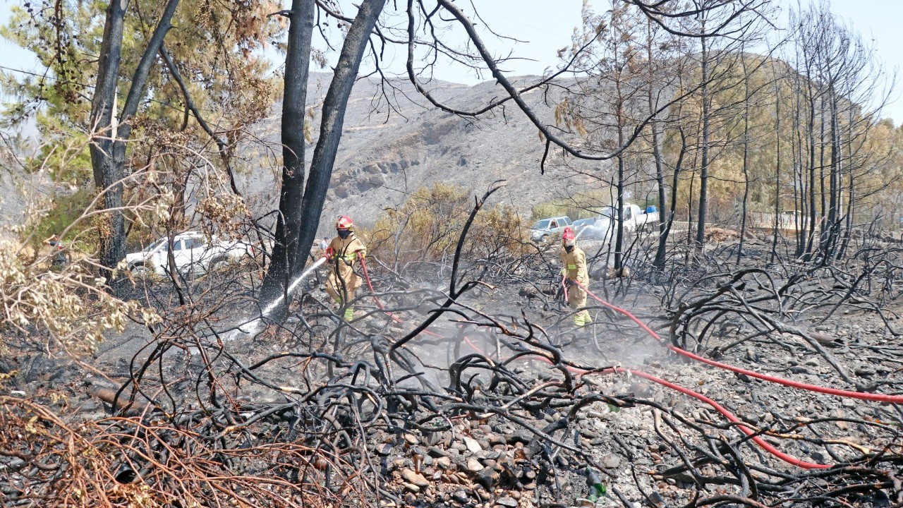 Profiteering off a disaster: Prices of firefighting equipment skyrocket amid ongoing fires