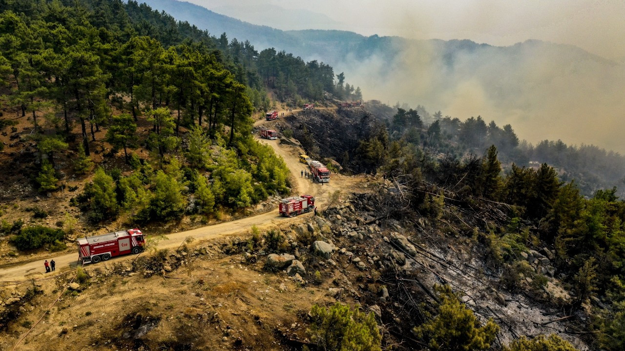 Turkish scientists warned about forestation method in Manavgat six years ago