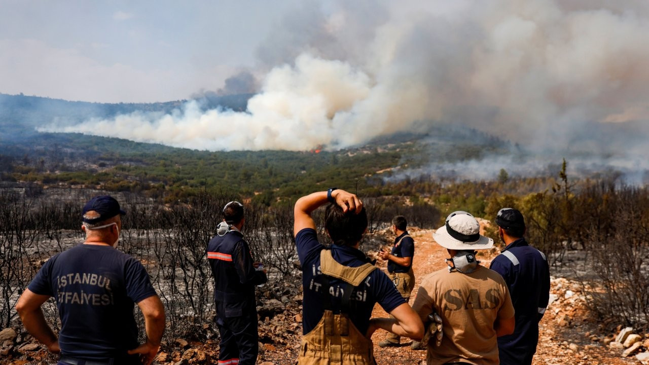 Drone footage shows devastation after wildfires ravage Turkey forests
