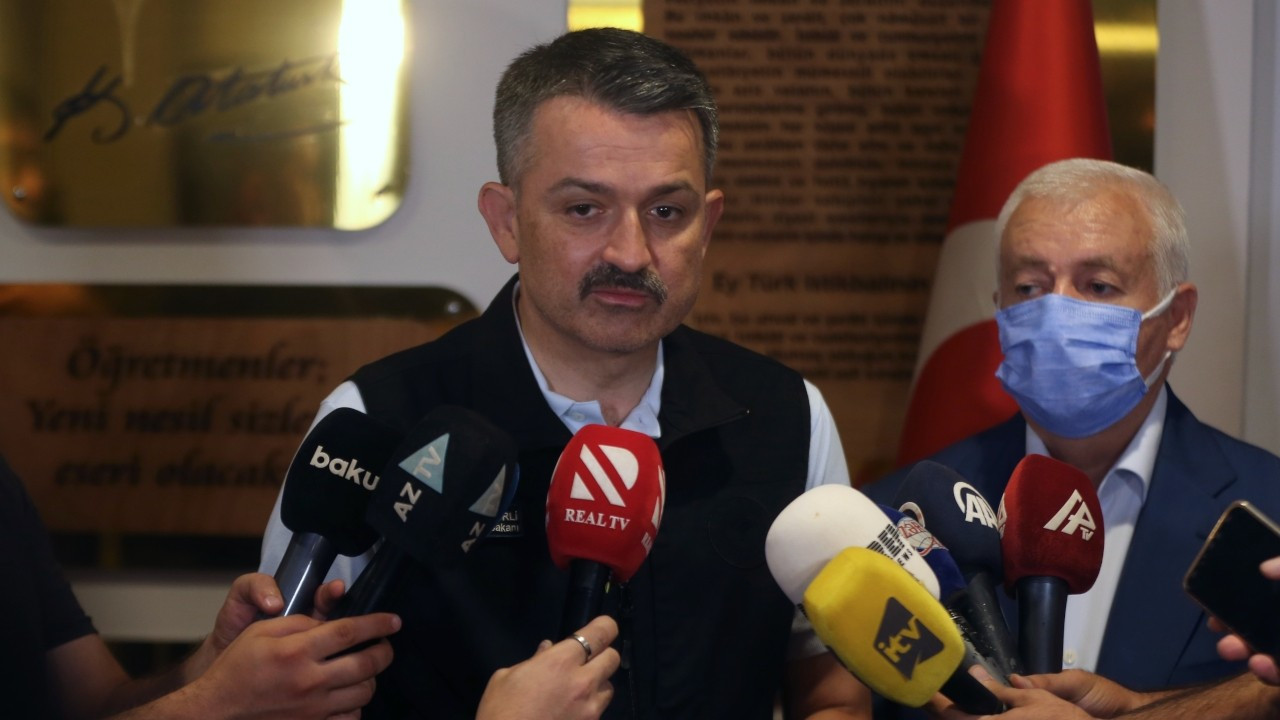 Minister continues to puzzle Turks with remarks on firefighting planes