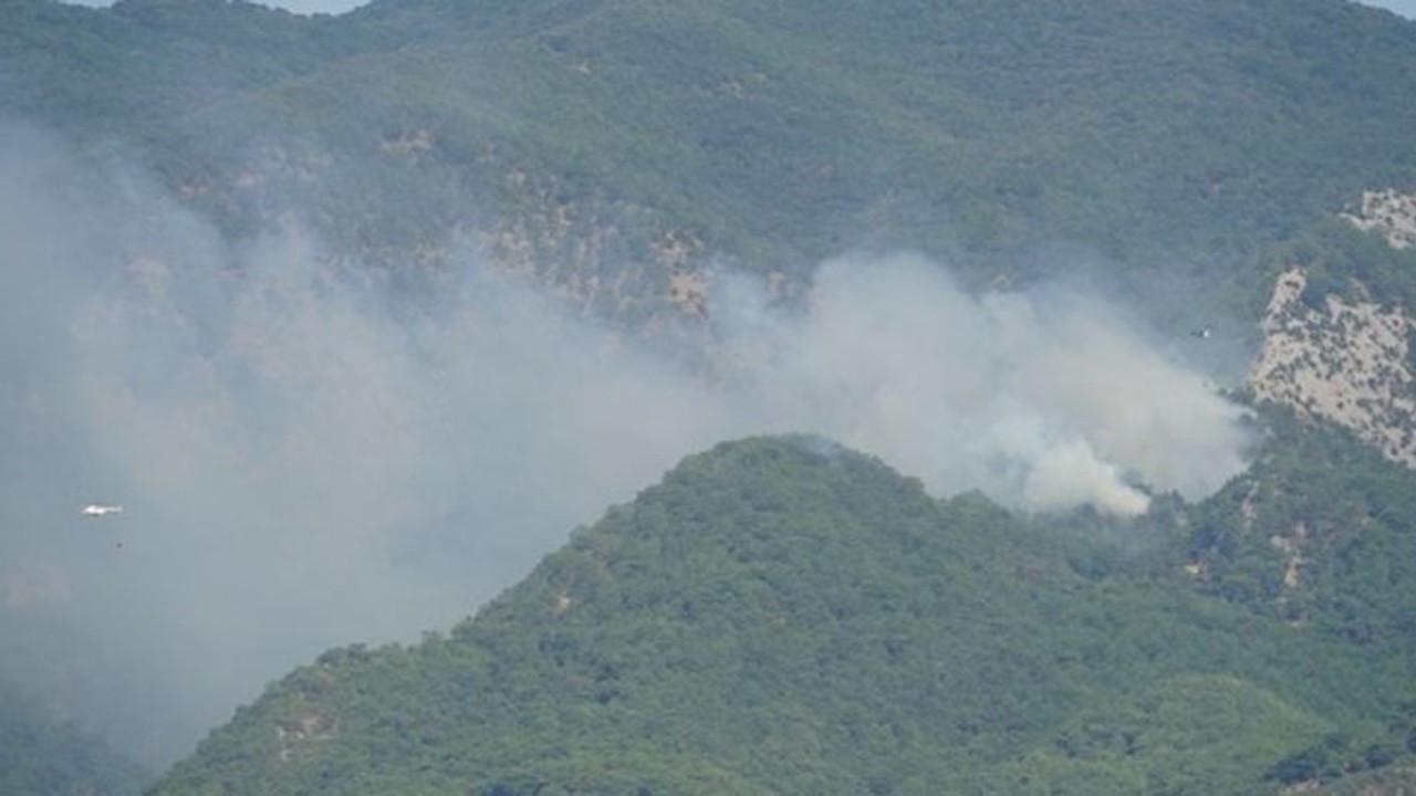 Forest fire erupts in Turkey's northwestern Kaz Mountains