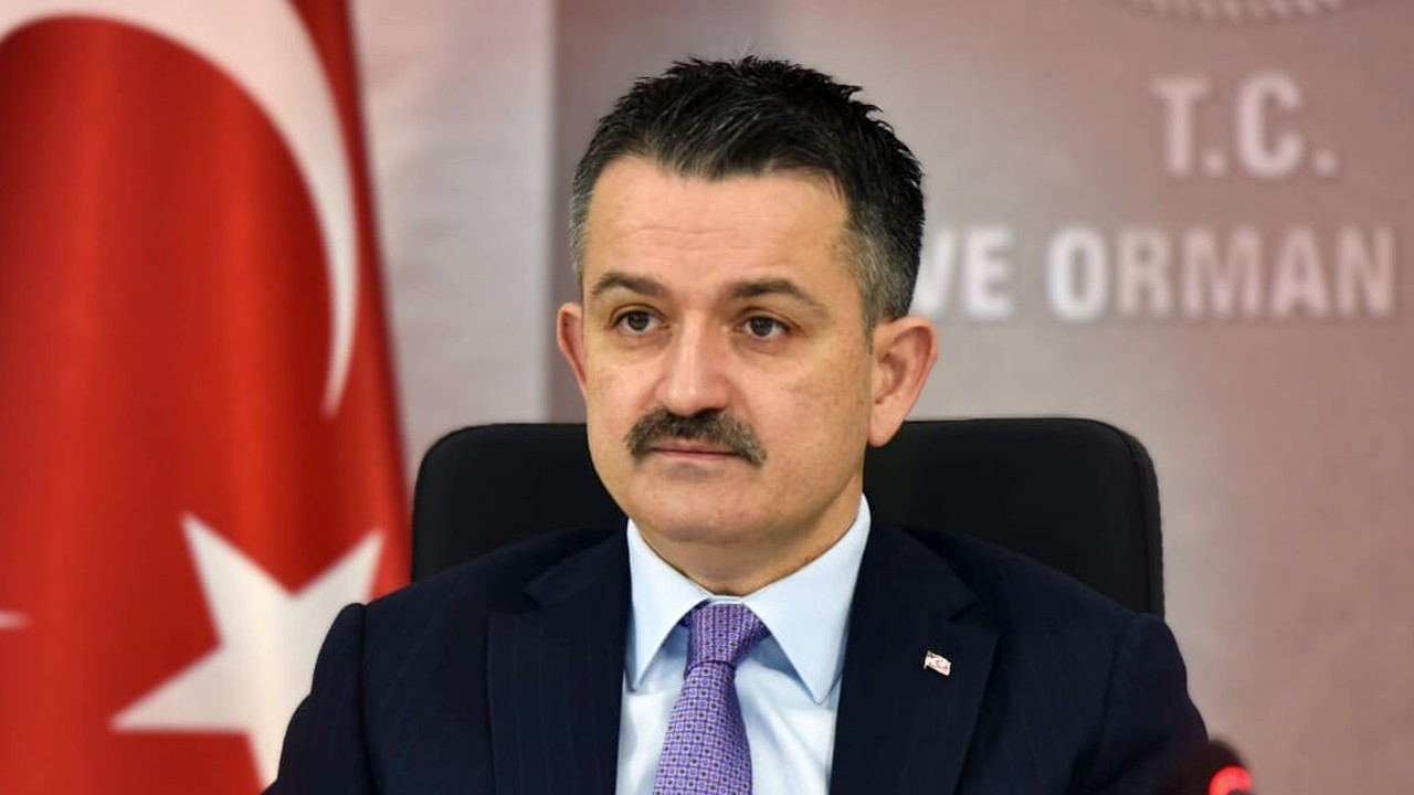 Turkish forestry minister voted most unsuccessful member of Cabinet