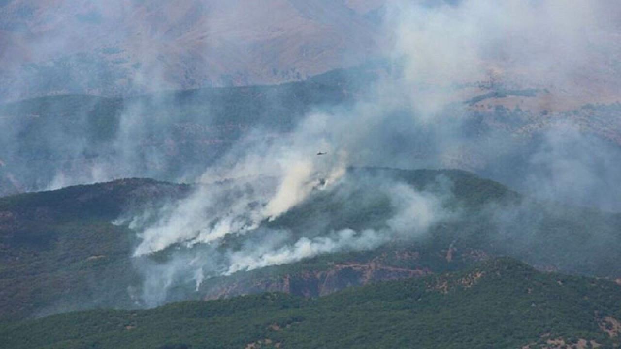 Forest fires in Turkey's Dersim continue amid outcry on social media