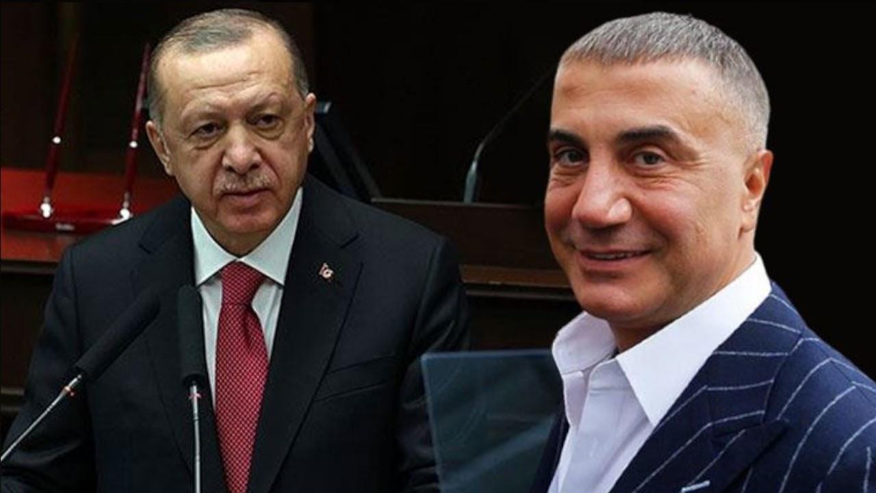 Erdoğan 'renewed dialogue with UAE due to mafia boss' Gulf residence'