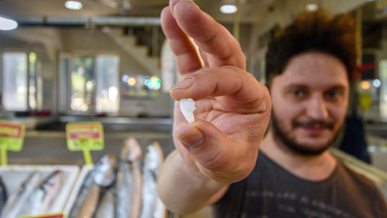 Turkish consumers rave for stones found in fish heads - Page 3