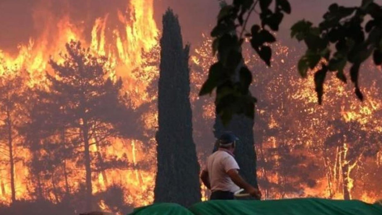 Teen arsonist 'bribed with chocolate' to spark massive Manavgat forest fire