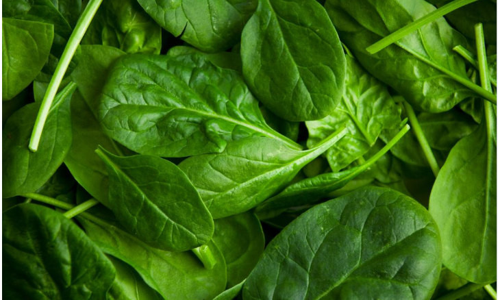 Toxins reason for spinach poisoning cases in Istanbul