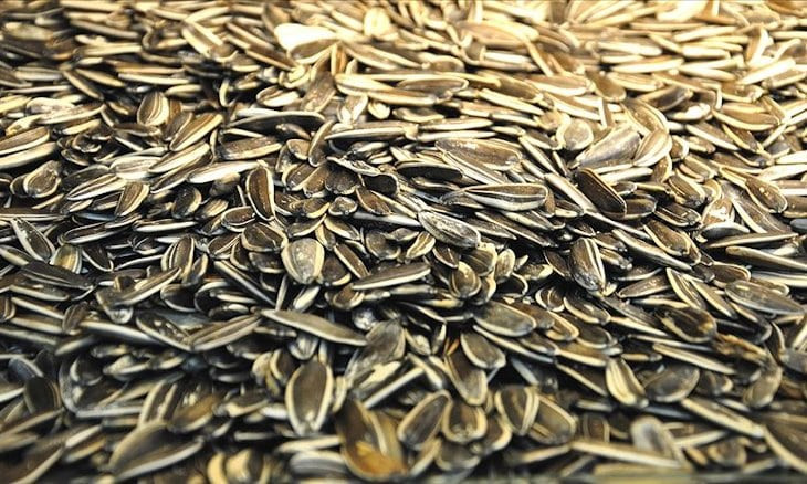 Coronavirus outbreak could double sunflower seed prices in Central Turkey