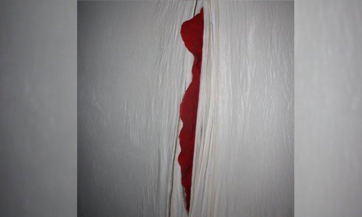 Turkish artist gets censored at exhibit in the Hague: Work found 'obscene'