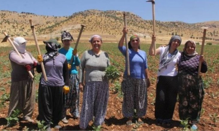 Ousted HDP mayor faces terrorism charges for supporting women's agricultural cooperative