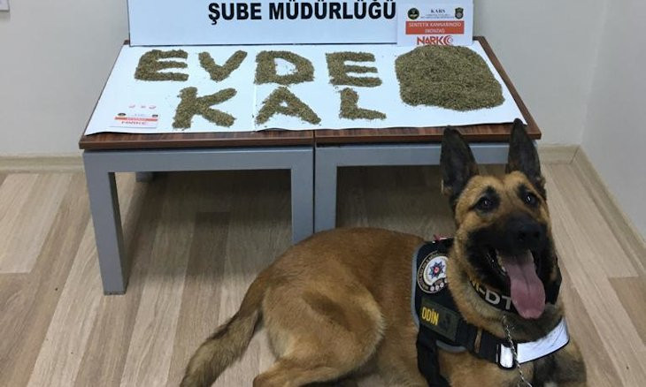Turkish police urge citizens to remain indoors by writing 'stay home' with drugs