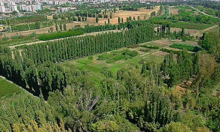 Protected land in Ankara's Atatürk Forest Farm rented to Ministry of National Defense