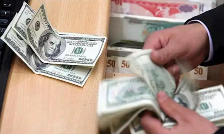 Turkish lira devalues drastically against dollar despite state interventions