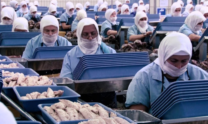 Dardanel tuna fish company slammed for treatment of workers infected with coronavirus