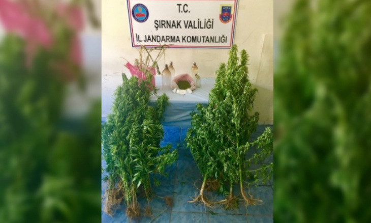 Drug use on the rise in southeastern Turkey