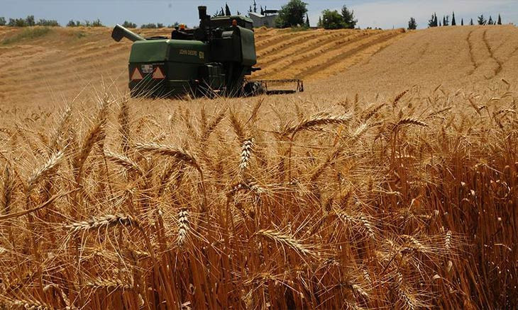 In 2020, Turkey imports $3.5b of crops 'that can grow anywhere in the country'