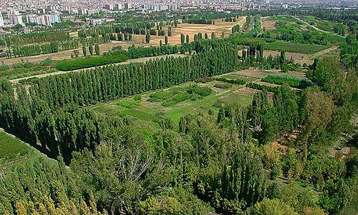 Architects win another victory in legal battle to prevent construction on Ankara's iconic forest farm